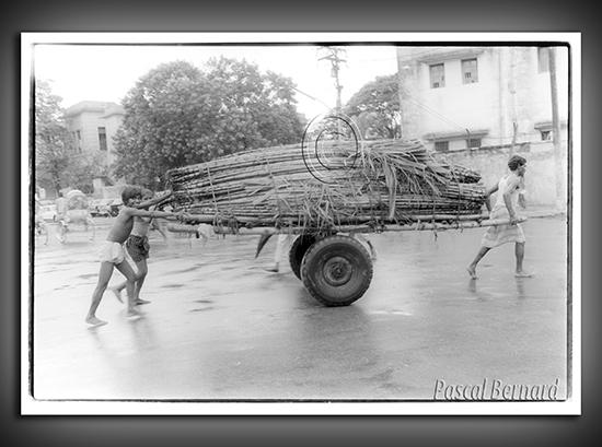 1986C bangladesh 006