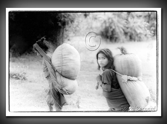 1986D nepal 015