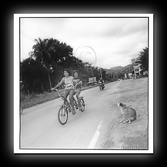 2005 thailande 001
