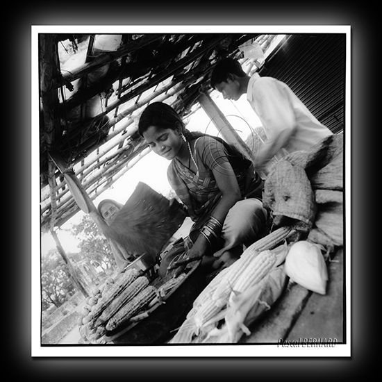 2006 inde 014