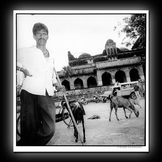 2006 inde 015