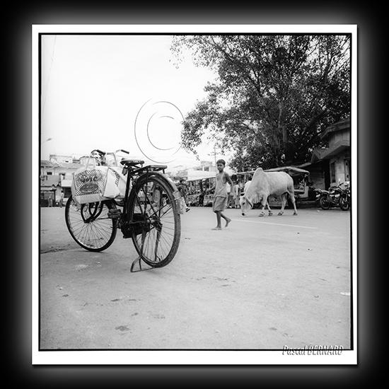 2006 inde 018