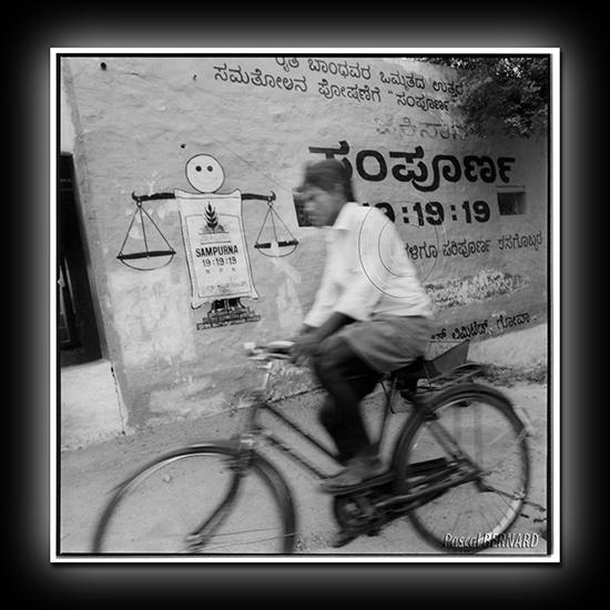 2008 inde 002