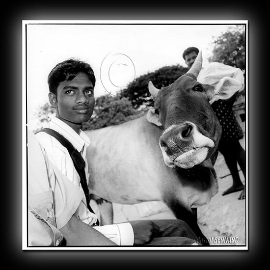 2008 inde 013