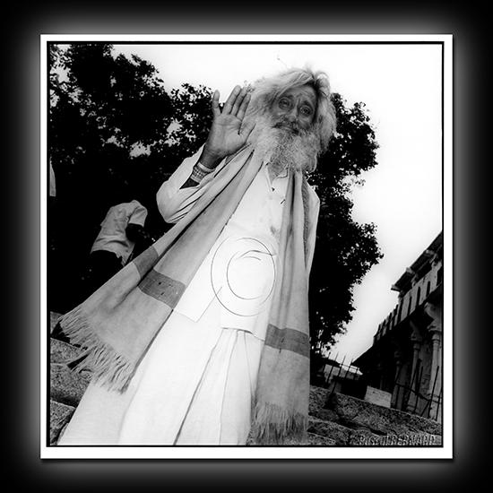 2008 inde 014