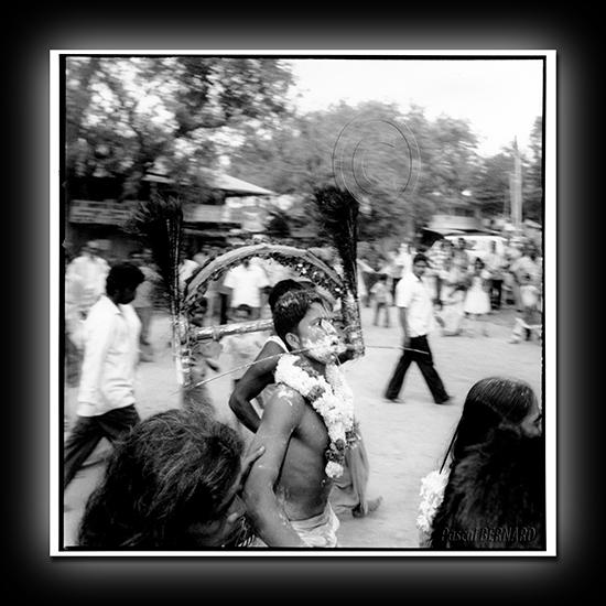 2010 inde 002
