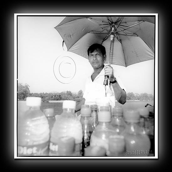 2010 inde 006