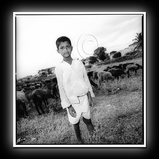 2012 inde 011