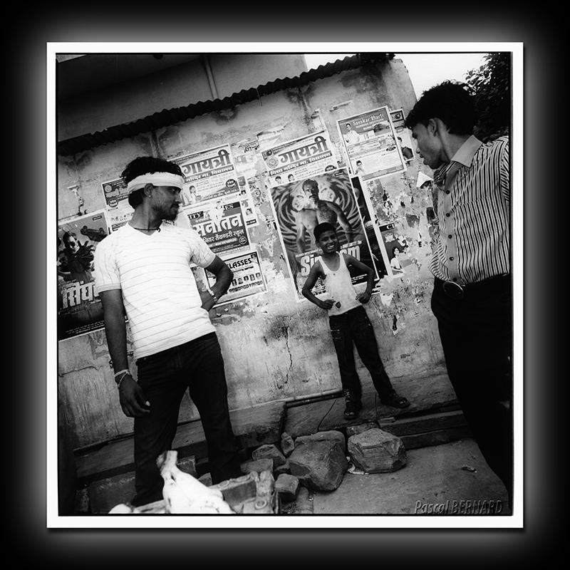 2011 inde 008
