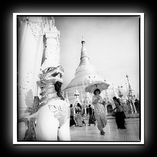 2014-birmanie-ok003